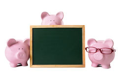 Piggy bank blank blackboard isolated copy space Stock Images
