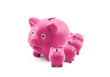 Piggy banks feeding from their mother Royalty Free Stock Image