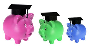 Piggy Banks with Mortarboards Stock Photography