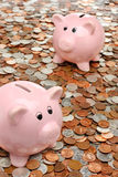 Piggy banks over money business & finance concept Stock Photography