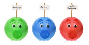 Piggy Banks with Sign Boards Stock Photography