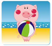Piggy on the beach. Vector illustration of piggy with the ball on the beach Stock Image