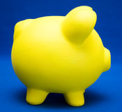 Piggy on Blue Royalty Free Stock Images