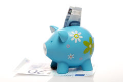 Piggy Blue with banknote Royalty Free Stock Image