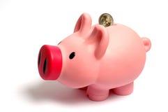 Piggy box. With 2 euro coin Royalty Free Stock Photos