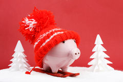 Piggy box with red hat with pompom standing on red ski and ski sticks on snow and around are snowbound trees on red background. Horizontal Stock Images