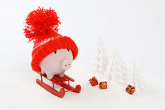 Piggy box with red hat with pompom standing on red sled on snow and around are snowbound trees and three gifts with gol - toboggan Stock Images