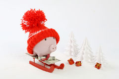 Piggy box with red hat with pompom standing on red sled on snow and around are snowbound trees - toboggan. Piggy box with red hat with pompom standing on red Stock Photography