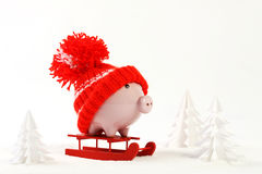 Piggy box with red hat with pompom standing on red sled on snow and around are snowbound trees - toboggan Stock Photos