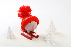Piggy box with red hat with pompom standing on red sled on snow and around are snowbound trees - toboggan Stock Photo