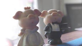 Piggy brud och piggy brudgum med buketten av rosor framme av väggen stock video