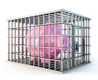 Piggy in cage Stock Photography