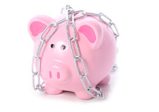 Piggy in chains Stock Photo