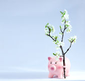 Piggy Coin Bank on Light Blue Background with Spring Flowers. Royalty Free Stock Photography