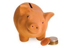 Piggy com dinheiro Foto de Stock