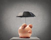 Piggy con un ombrello Immagini Stock Libere da Diritti