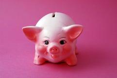 Piggy cor-de-rosa Foto de Stock Royalty Free