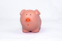 Piggy cor-de-rosa Imagens de Stock