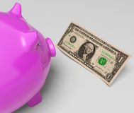Piggy Dollars Shows Income Saved In America Royalty Free Stock Images