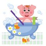 piggy duscha för bad Arkivfoton