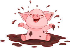 Piggy in einer Pfütze Lizenzfreies Stockbild