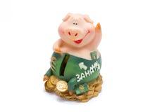 Piggy Ferkel, das auf Geld sitzt lizenzfreie stockfotos