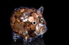 piggy fulla encentmynt för amerikansk gruppclear Fotografering för Bildbyråer
