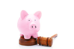 Piggy gavel. Piggy bank and a legal gavel, on white Royalty Free Stock Image