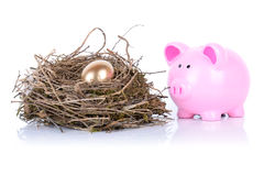 Piggy golden egg Royalty Free Stock Images
