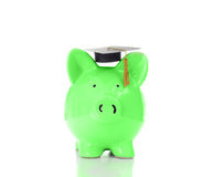 Piggy graduate Royalty Free Stock Image