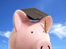 Piggy grap cap Stock Photos