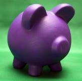 Piggy on Green Royalty Free Stock Photos