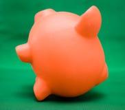 Piggy on Green Stock Photos