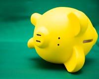Piggy on Green Stock Photo