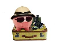 Piggy on Holiday Stock Photo