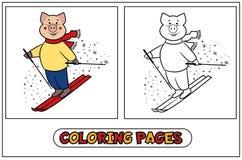 Piggy kleuren - skiër Stock Foto's