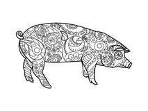 Piggy kleurend boek voor volwassenenvector royalty-vrije illustratie