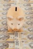 Piggy med pengar Arkivbild