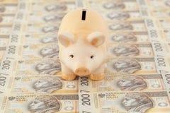 Piggy met geld Stock Foto's