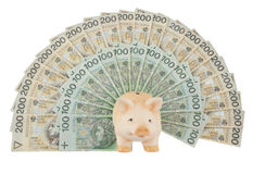 Piggy with money. Pink piggy with Poland  money on white background Stock Photo
