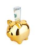 Piggy Money Box with dollars Stock Photo