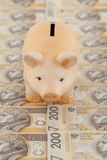 Piggy with money. Pink piggy on polish money as background Stock Photography