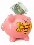Piggy moneybox. Piggy moneybox with five euros Royalty Free Stock Image