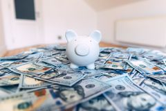 Piggy moneybox with dollar cash. Closeup. Financial concept Stock Photos