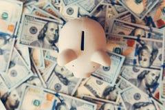Piggy moneybox med dollarkassa Royaltyfri Bild