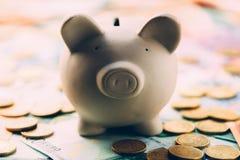 Piggy moneybox med eurokassa Arkivfoto