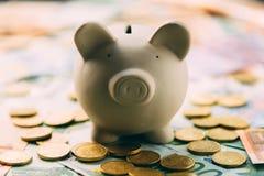 Piggy moneybox med eurokassa Royaltyfria Foton
