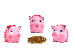 Piggy moneyboxes around euro coin Royalty Free Stock Images