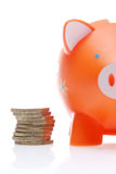 Piggy Orange Stockfotos