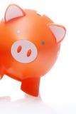 Piggy Orange Stockbilder